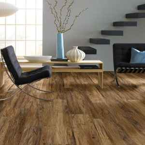 Shaw Luxury Vinyl Plank Flooring
