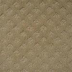 Style 340 Residential Carpet