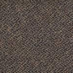 54440 Swizzle Tile by Shaw Carpet