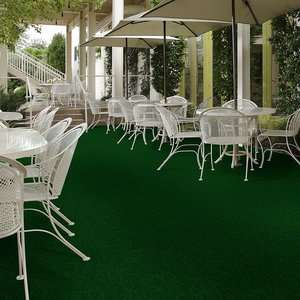 Tactic (S) 54622 Indoor Outdoor Grass Carpet by Shaw Carpets