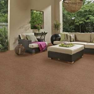 Natural Path 54636 Indoor Outdoor Grass Carpet by Shaw Carpets