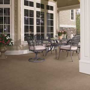 Indoor Outdoor Grass Carpet by Shaw