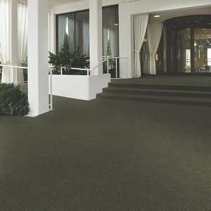 Indoor Outdoor Carpet by Shaw
