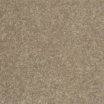 Carefree II Builders Carpet Color 00107