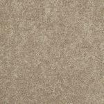 Carefree II Builders Carpet Color 00201