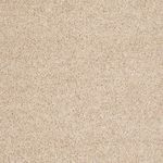Carefree II Builders Carpet Color 00203