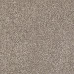 Carefree II Builders Carpet Color 00300