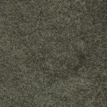 Carefree II Builders Carpet Color 00301