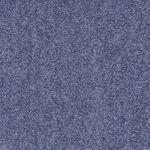 Carefree II Builders Carpet Color 00400
