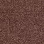 Carefree II Builders Carpet Color 00610