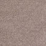Carefree II Builders Carpet Color 00700