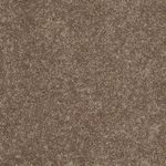 Carefree II Builders Carpet Color 00701