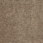 Carefree II Builders Carpet Color 00704