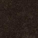 Carefree II Builders Carpet Color 00705