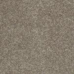 Carefree II Builders Carpet Color 00720