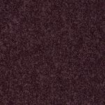 Carefree II Builders Carpet Color 00902