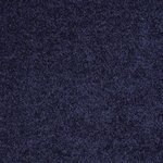 Carefree II Builders Carpet Color 00403