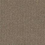 Style Famous Last Words I0147 Commercial Carpet
