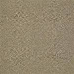 Style Pace I0250 Commercial Carpet