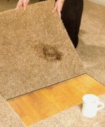 Milliken Legato Carpet Tiles from Carpet Bargains