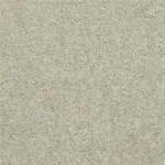 52N67 Intrigue II Builders Carpet 00109