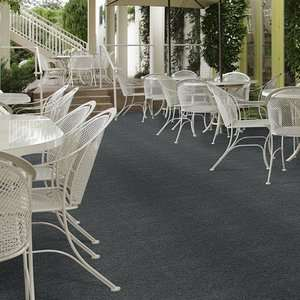 Softscape I Indoor Outdoor Grass Carpet by Shaw
